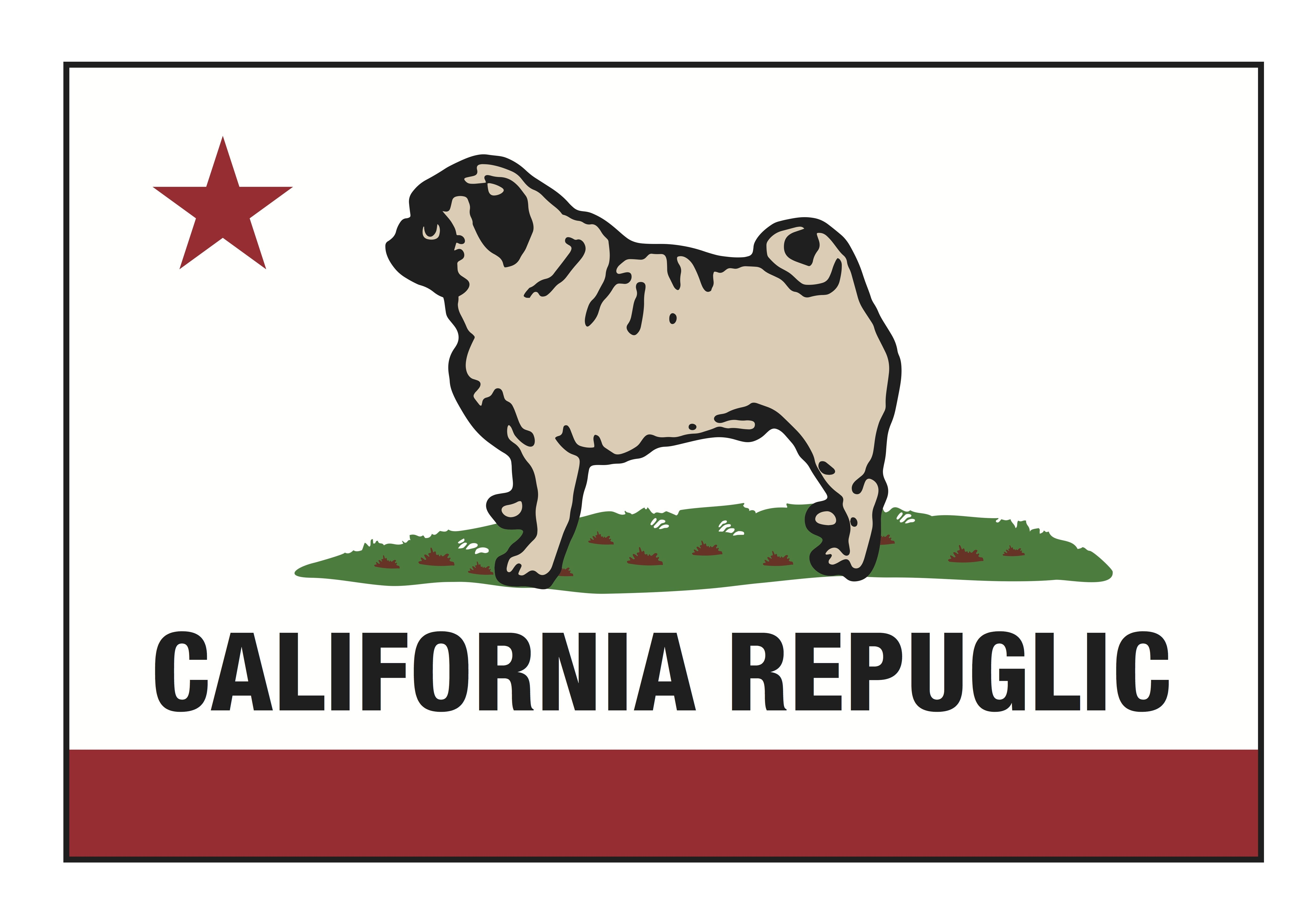 Pug of the Month January 2015 – Northern California Pug Club